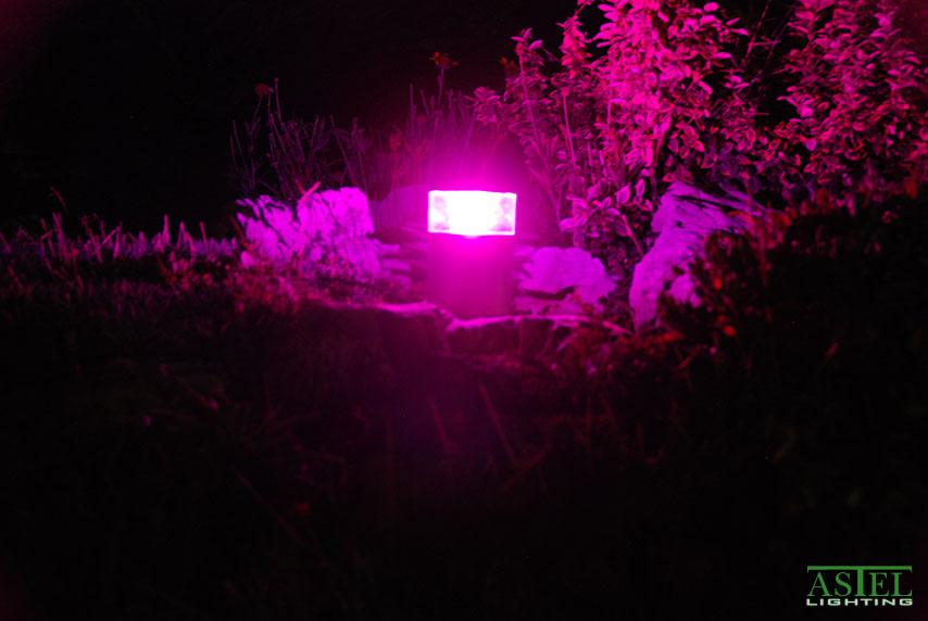pool garden light