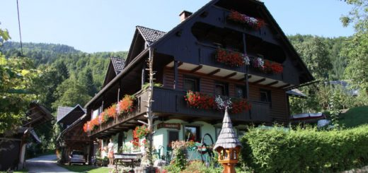 Bohinj apartments