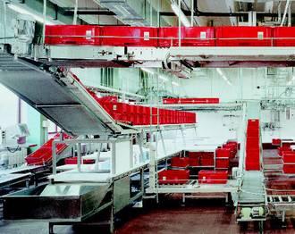 nieors automated flexible conveyor system