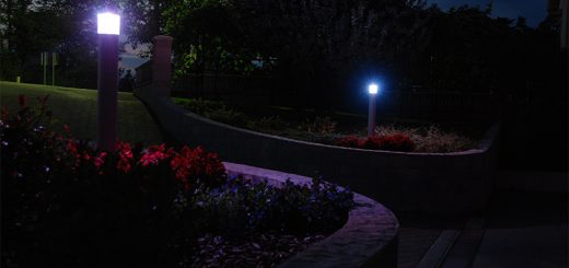path LED lights