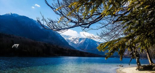 Spend your holidays in Bohinj